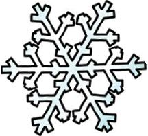 Snowflake216x198