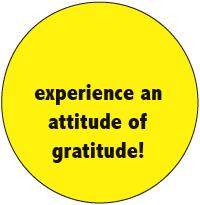 Experience An Attitude